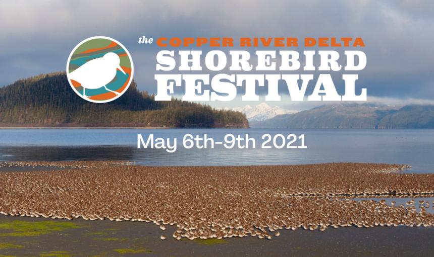 Copper River Delta Shorebird Festival